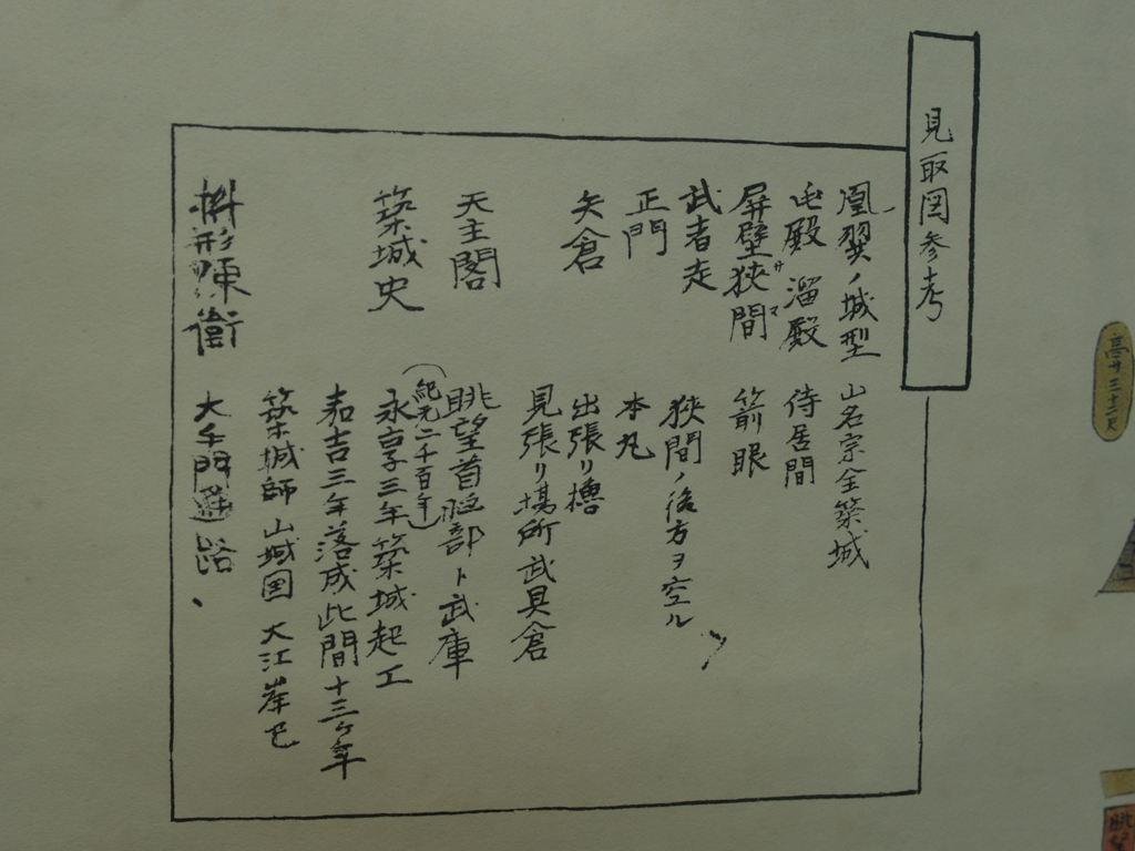 P7054896.JPG
